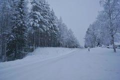 Viagem ártica fria foto de stock