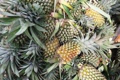 Viagem a Ásia: abacaxis fotografia de stock