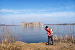 Viagem aos cormorões do lago Imagens de Stock