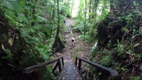Viagem da selva video estoque
