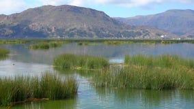 Viagem de Puno no lago Titicaca video estoque