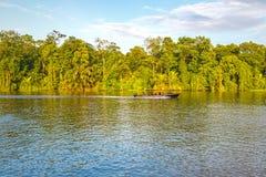 Viagem do barco no rio de Tortuguero, Costa Rica imagem de stock royalty free
