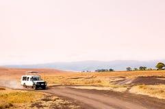 Viagem do safari em Ngorongoro imagem de stock royalty free