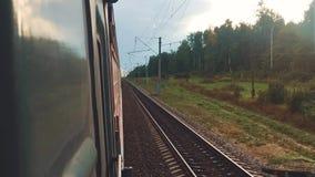 Viagem do vagão do trem do curso do conceito Vista através da janela do trem dos vagões na composição que passa a natureza filme