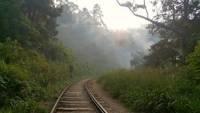 viagem em Sri Lanka fotos de stock