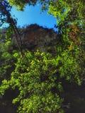 Viagem na natureza marroquina Imagem de Stock Royalty Free