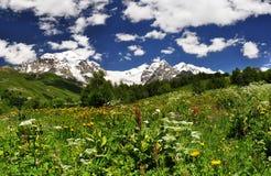 Viagem nas montanhas Fotos de Stock Royalty Free