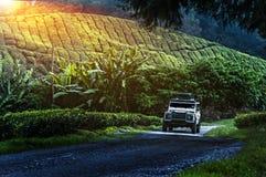 Viagem nas montanhas verdes com fora do veículo de estrada Foto de Stock