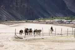 Viagem nos Himalayas Fotos de Stock