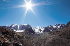 Viagem a pé através dos vales da montanha Beleza dos animais selvagens Altai, a estrada aos lagos Shavlinsky, Rússia Picos de nev Foto de Stock Royalty Free