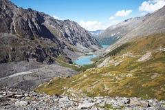 Viagem a pé através dos vales da montanha Beleza dos animais selvagens Altai, a estrada aos lagos Shavlinsky, Rússia Picos de nev Fotografia de Stock Royalty Free