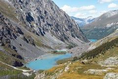 Viagem a pé através dos vales da montanha Beleza dos animais selvagens Altai, a estrada aos lagos Shavlinsky, Rússia Picos de nev Fotografia de Stock