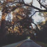 Viagens por estrada Fotografia de Stock Royalty Free