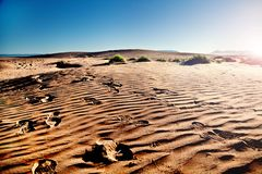 Viaggi ed avventure Paesaggio ed orme del deserto del Marocco nella sabbia Tramonto scenico immagini stock libere da diritti