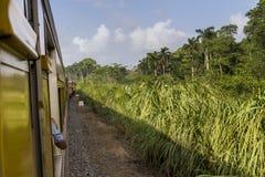 Viaggiando con il treno Immagini Stock Libere da Diritti
