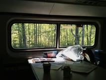 Viaggiando in treno Immagini Stock
