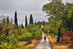 Viaggiatore al paesaggio di autunno Fotografia Stock