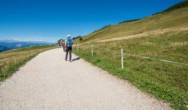 Viaggiatore che cammina su una traccia in montagne delle dolomia, Tyrolo del sud, Italia Fotografia Stock Libera da Diritti