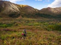 Viaggiatore con zaino e sacco a pelo in Autumn Tundra dell'Alaska, valle della montagna fotografie stock