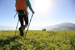 Viaggiatore con zaino e sacco a pelo che fa un'escursione sulla bella traccia del picco di montagna Fotografia Stock Libera da Diritti