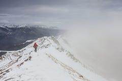 Viaggiatore con zaino e sacco a pelo che scala una cresta nevosa dello stretto della montagna nell'inverno Fotografia Stock Libera da Diritti