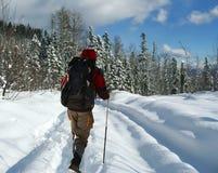 Viaggiatore con zaino e sacco a pelo che va in su dell'inverno Fotografie Stock Libere da Diritti