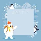Viaggiatore con zaino e sacco a pelo dell'orso polare e struttura artici dei pinguini Immagini Stock