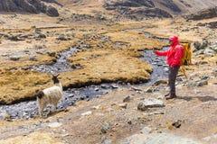 Viaggiatore con zaino e sacco a pelo dell'uomo che fotografa la corrente del fiume della montagna del lama Immagini Stock