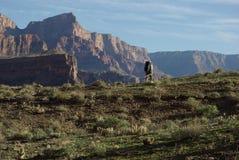 Viaggiatore con zaino e sacco a pelo, grande canyon Immagine Stock