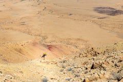 Viaggiatore con zaino e sacco a pelo turistico dell'uomo dell'alpinista che posa la montagna s del deserto di yoga Fotografie Stock