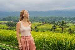 Viaggiatore della giovane donna sui bei terrazzi del riso di Jatiluwih contro lo sfondo dei vulcani famosi in Bali, Indonesia fotografia stock