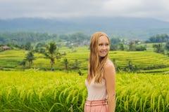 Viaggiatore della giovane donna sui bei terrazzi del riso di Jatiluwih contro lo sfondo dei vulcani famosi in Bali, Indonesia immagine stock libera da diritti