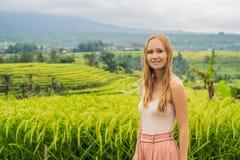 Viaggiatore della giovane donna sui bei terrazzi del riso di Jatiluwih contro lo sfondo dei vulcani famosi in Bali, Indonesia fotografia stock libera da diritti
