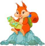 Viaggiatore dello scoiattolo Fotografia Stock