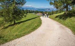 Viaggiatori che camminano su una traccia in montagne delle dolomia, Tyrolo del sud, Italia Immagini Stock Libere da Diritti