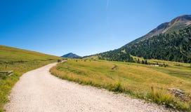 Viaggiatori che camminano su una traccia in montagne delle dolomia, Tyrolo del sud, Italia Immagine Stock Libera da Diritti