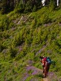 Viaggiatori con zaino e sacco a pelo delle donne che fotografano i fiori selvaggi Fotografia Stock Libera da Diritti