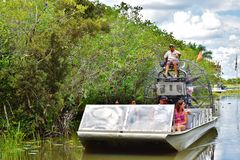 Viaggiatori della fauna selvatica di esplorazione del parco dell'alligatore di Florida S.U.A. Fotografie Stock