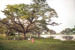 Viaggiatori madre della famiglia e figlia del bambino che esplora la riserva naturale selvaggia che esamina i pipistrelli selvagg immagine stock libera da diritti