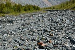 Viaggio ad Altay Mountains Fotografia Stock
