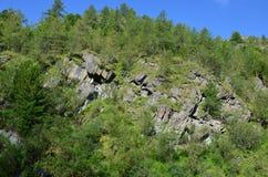 Viaggio ad Altay Mountains Fotografie Stock Libere da Diritti