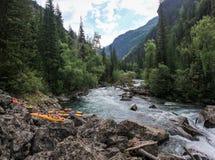 Viaggio attraverso la natura selvaggia del Altai Foreste di conifere e la valle immagine stock