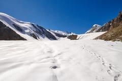 Viaggio attraverso le montagne di Altai a Aktru Facendo un'escursione ai picchi nevosi delle montagne di Altai Sopravvivenza nell Immagini Stock