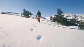 Viaggio che fa un'escursione in montagne di inverno, orme della ragazza nella neve, movimento lento stock footage