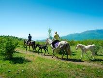 Viaggio dei cavalieri del cavallo Fotografie Stock Libere da Diritti