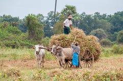 Viaggio del Myanmar Fotografia Stock