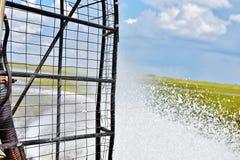 Viaggio dell'alligatore del airboat dei terreni paludosi degli S.U.A. dello stato di Florida Fotografie Stock