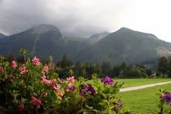 Viaggio della bici di montagna della montagna Fotografia Stock Libera da Diritti