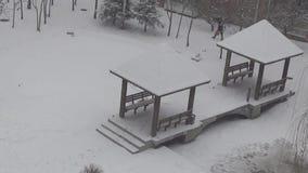 Viaggio della neve leggera video d archivio