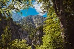 Viaggio delle alpi della Baviera della Germania Fotografie Stock Libere da Diritti